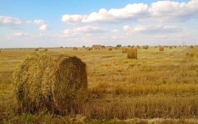 AVIS AUX AGRICULTEURS (Mise à jour du 31/08)
