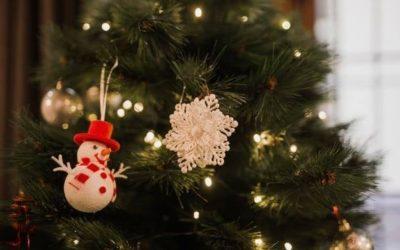 Collecte des sapins de Noël à partir du 12 janvier