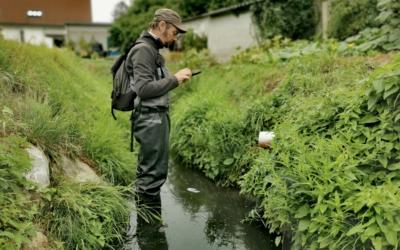 Analyse de l'état de santé des rivières du bassin de la Meuse Aval et affluents