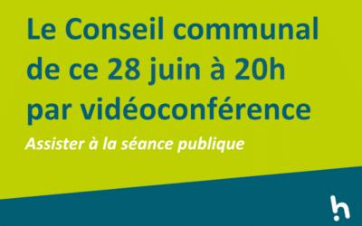 Conseil communal en vidéoconférence